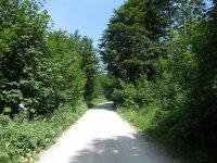 Priener Hütte: Bild #11