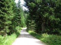 Priener Hütte: Bild #32