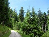 Naturnser Alm: Bild #47