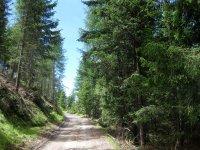 Naturnser Alm: Bild #52