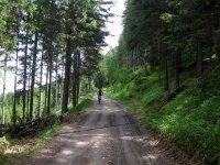 Naturnser Alm: Bild #56