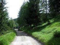 Naturnser Alm: Bild #57