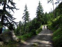 Naturnser Alm: Bild #62