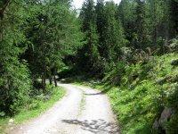 Naturnser Alm: Bild #66