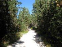 Pleisenhütte: Bild #12