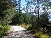 Pleisenhütte: Bild #13