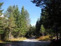 Pleisenhütte: Bild #14