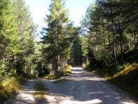 Pleisenhütte: Bild #15
