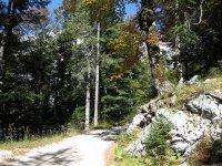 Pleisenhütte: Bild #23