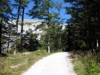 Pleisenhütte: Bild #27