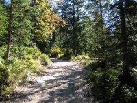 Pleisenhütte: Bild #29