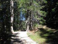 Pleisenhütte: Bild #31