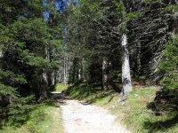 Pleisenhütte: Bild #32