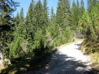 Pleisenhütte: Bild #33