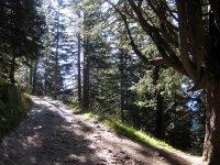 Pleisenhütte: Bild #34