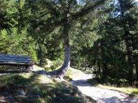 Pleisenhütte: Bild #36