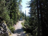 Pleisenhütte: Bild #38