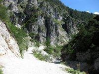 Oberbrunnalm: Bild #3