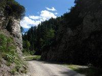 Oberbrunnalm: Bild #10