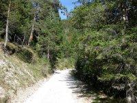 Oberbrunnalm: Bild #23