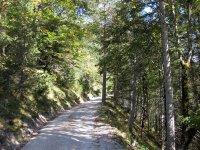 Oberbrunnalm: Bild #25