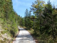 Oberbrunnalm: Bild #29