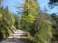 Oberbrunnalm: Bild #32