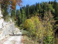 Oberbrunnalm: Bild #34