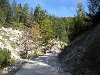 Oberbrunnalm: Bild #40