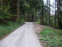Neulandhütte: Bild #18