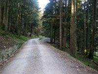 Neulandhütte: Bild #19