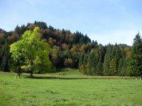 Neulandhütte: Bild #26