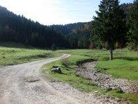 Neulandhütte: Bild #28