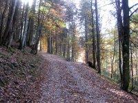 Neulandhütte: Bild #31