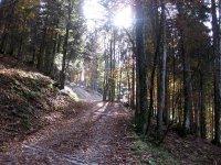 Neulandhütte: Bild #32