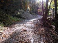 Neulandhütte: Bild #33