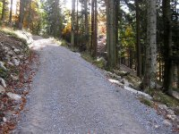 Neulandhütte: Bild #34