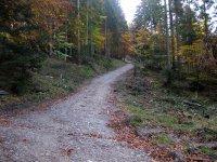 Neulandhütte: Bild #35