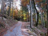 Neulandhütte: Bild #36