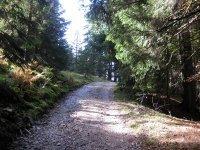 Neulandhütte: Bild #37