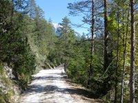 Oberbrunnalm: Bild #15