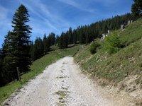 Oberbrunnalm: Bild #47