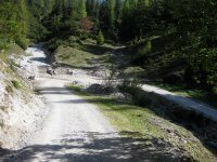 Oberbrunnalm: Bild #51