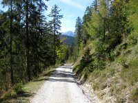 Oberbrunnalm: Bild #60