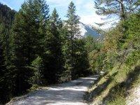 Oberbrunnalm: Bild #67