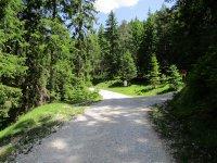 Adlerhorst: Bild #12