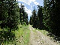 Adlerhorst: Bild #15