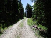 Adlerhorst: Bild #16