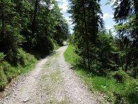Adlerhorst: Bild #19