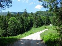 Scharnitz-Almen: Bild #8